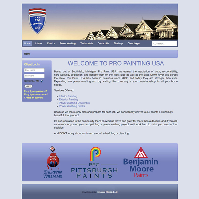 Pro Painting USA Website